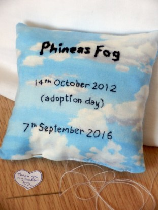 Phinny's inner pillow