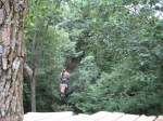 Mark Craven of Ashville, N.C. tries out the new Zip Line at Tree Frog Canopy Tours near Loudonville, Ohio