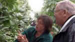 Nature Center Manager Linda Paull shows Neil Zurcher a banana tree