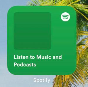 Spotify Widgets iOS 14