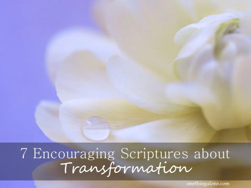 7 encouraging scriptures about transformation one thing alone