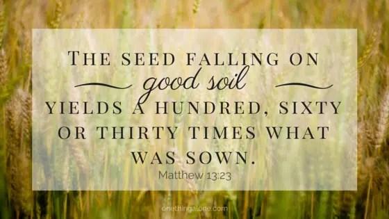 seed on good soil (2)
