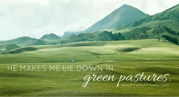 green pastures psalm 23