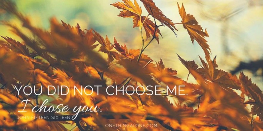 "Jesus said, ""You did not choose Me. I chose you."""
