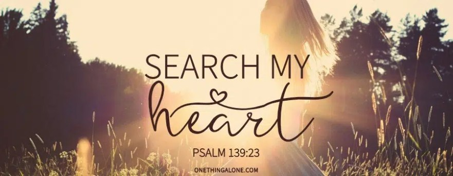 Search-my-heart