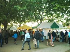 the mayor's thame festival -2