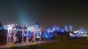 2014台北燈會在花博 12
