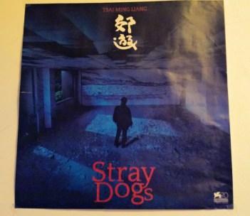stray dog - 郊遊