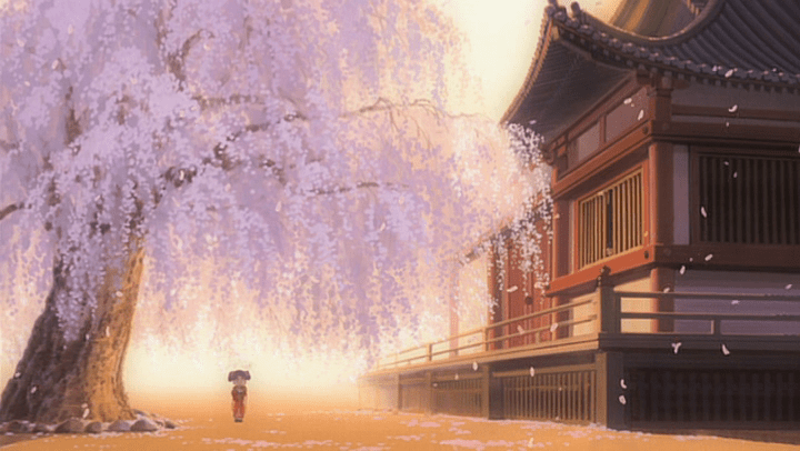 Sakura, la flor del cerezo