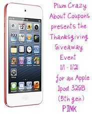 Bloggers Wanted – Apple Ipod (5th Gen) Pink Giveaway Event