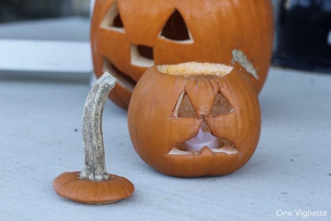 11.3.15. Cian. pumpkin
