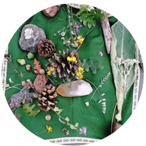 16_TraditionsWesternHerbs 2