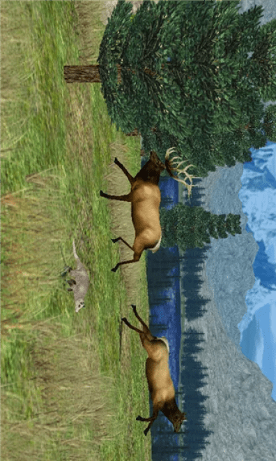 Big-Buck-Hunter-Pro6