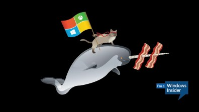 Windows_Insider_Ninjacat_Narwhal-1366x768