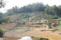 Landwirdschaft ist mühsam im Landesinneren.