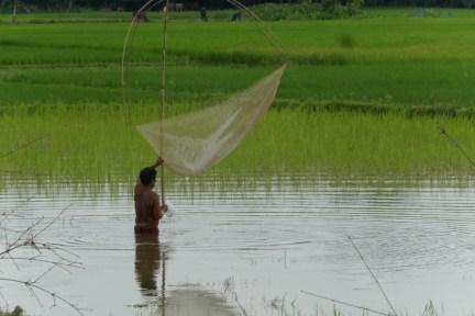 Und Morgen giht's Reis mit Fisch.