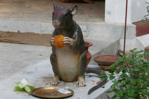Auch diese Plastikratte kann man als Hindu verehren.
