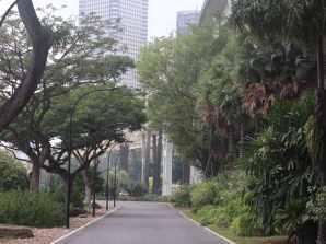 """Man versucht grün in den Stadt zu bringen. Der Slogan: """"Laßt uns Singapur zu unserem Garten machen."""""""