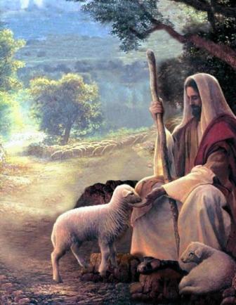 Jesus_sheep_