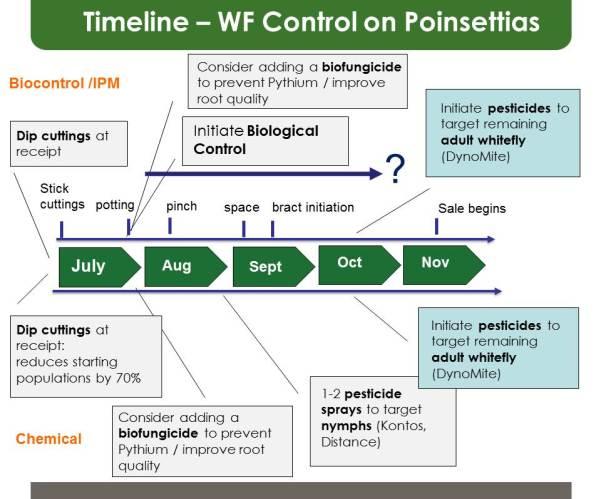 Poinsettia IPM timeline_2017