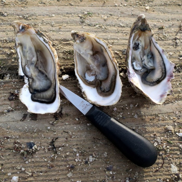 a guide to tasting oysters when visiting Normandy oyster colonies for Carrefour Belgium by @onfoodandwine