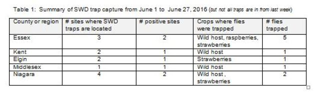 swd trap capture summary june 30