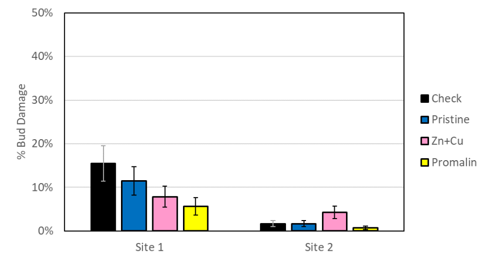Figure showing the percent bud damage in each treatment at each site. There was significantly less bud damage at site 1 with the zinc + copper treatment and the Promalin treatment