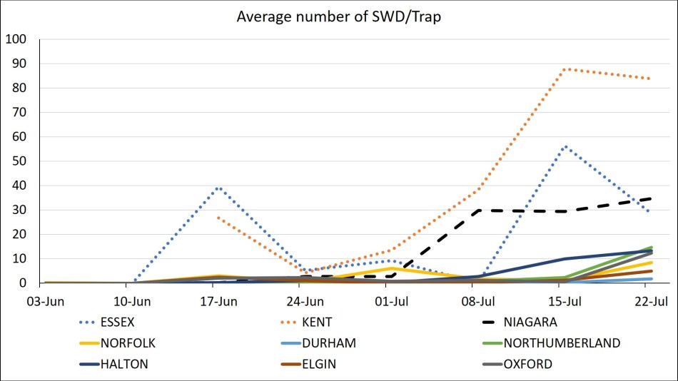 Graph of SWD counts in Essex, Kent, Niagara, Norfolk, Elgin, Halton, Oxford, Durham and Northumberland as of July 21, 2020.