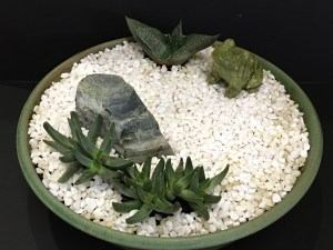 Zen Dish Garden