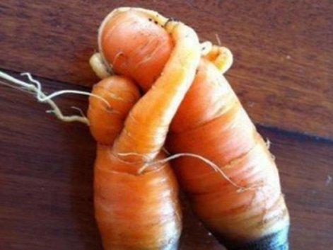 lelijke groenten 2