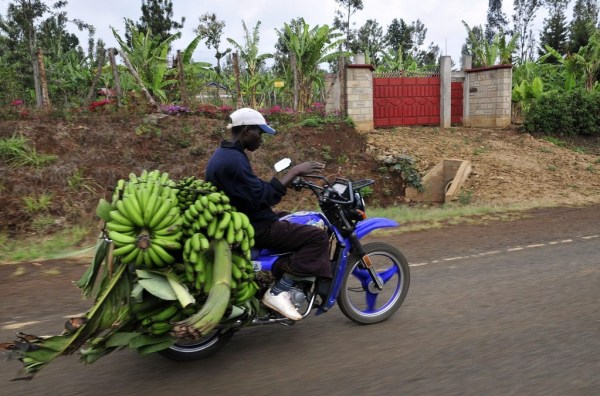 route to market africa