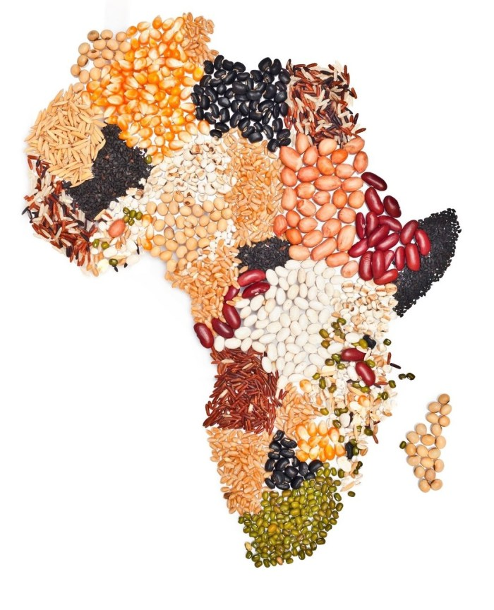 Africa food map