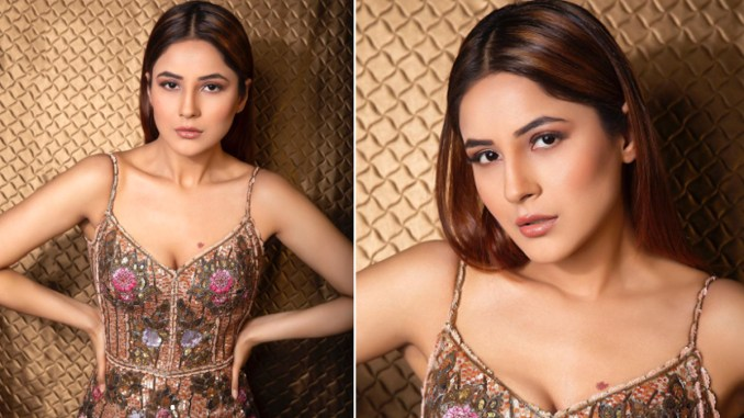 Shehnaaz Gill Dazzles in a Sequin Dress by Rocky Star, the Price of the Dress Can Fund One Trip Around India (View Pic)