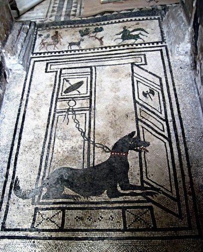Mosaique au sol d'une maison à Pompéi