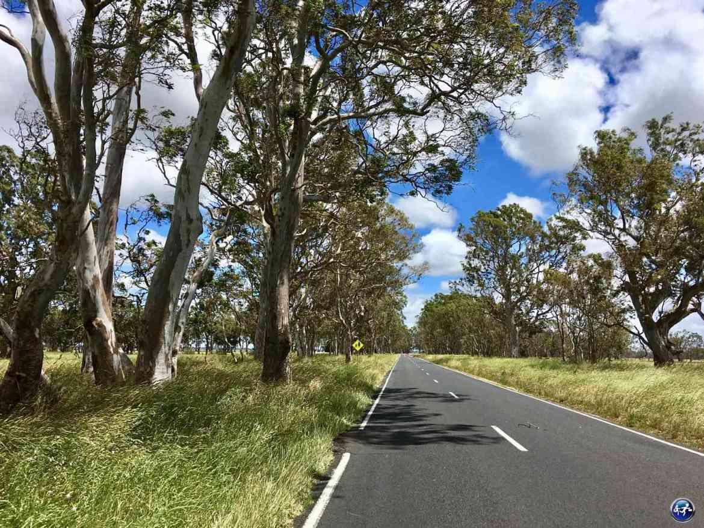 conduire en australie route australienne australie blog voyage suisse cosy on holidays again
