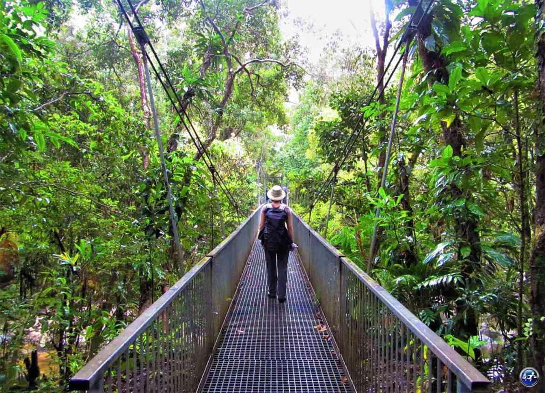 mossman gorge pluie daintree rainforest queensland australie blog voyage suisse cosy