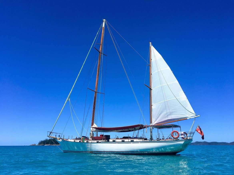 Coirisière dans les iles Whitsundays en Australie
