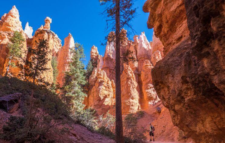 Au milieu des hoodoos sur le Queens Garden Trail à Bryce Canyon