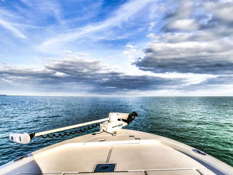 Tour en bateau Ten Thousand Islands Floride