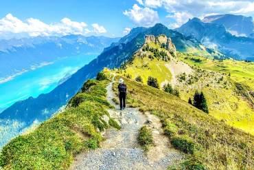 Schynige Platte Jungfrau region Oberland bernois
