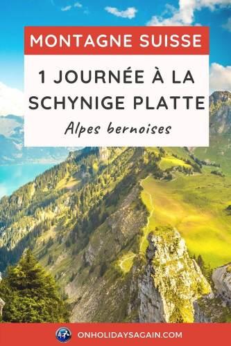 Schynige Platte 1 jour en montagne dans les Alpes bernoises en Suisse