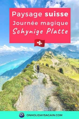 Schynige Platte paysage suisse et journée magique dans les alpes bernoises