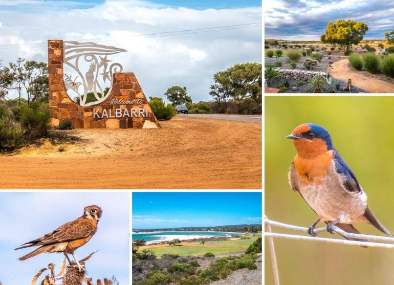 Kalbarri côte ouest Australie