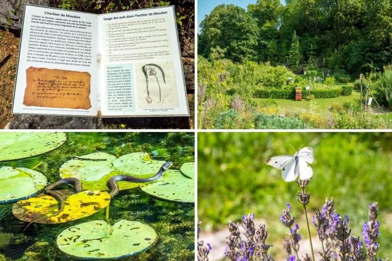 Jardin botanique à voir à Neuchâtel