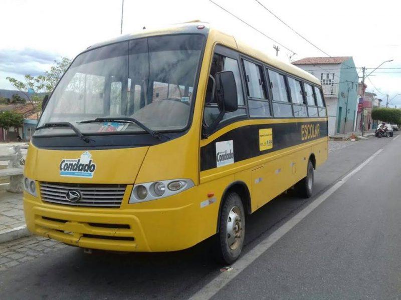 nibus-1-800x599