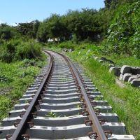 Tráfego de trens entre Mancadaru e Cabedelo será suspenso neste sábado, 17