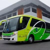Marcopolo fornece 15 ônibus Viaggio 900 para a Expresso Princesa dos Campos
