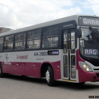 Novos ônibus na Transportadora Arsenal