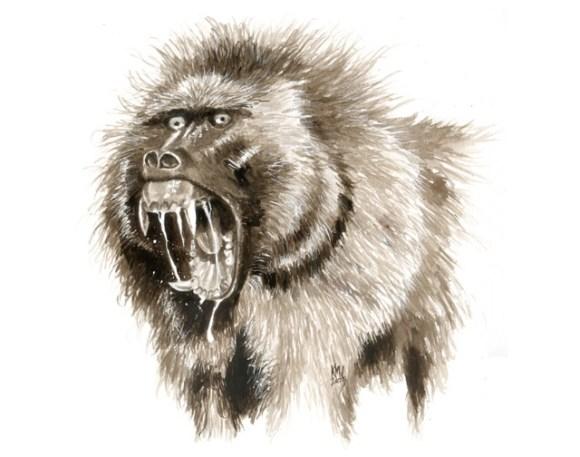 devil-monkey-2