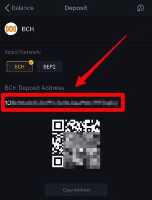 ビットスターズ ビットコインキャッシュ出金方法